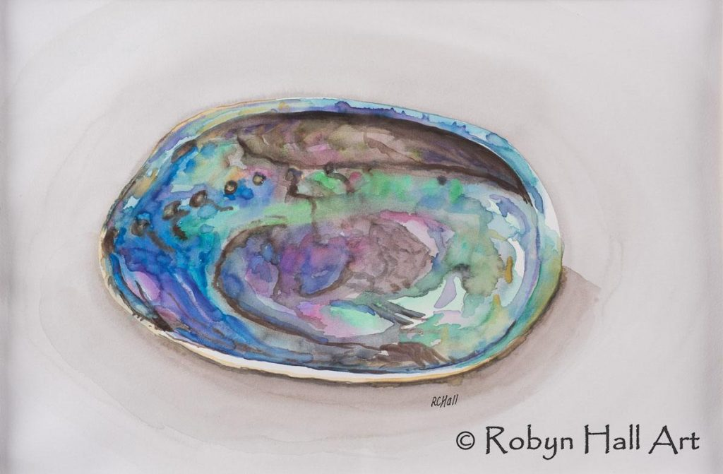 Paua Shell - Watercolour